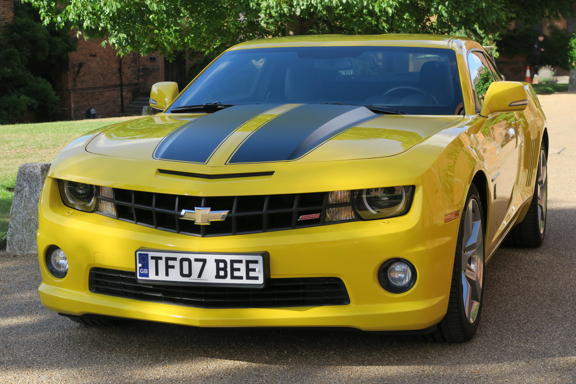 Welcome to bumblebee car hire